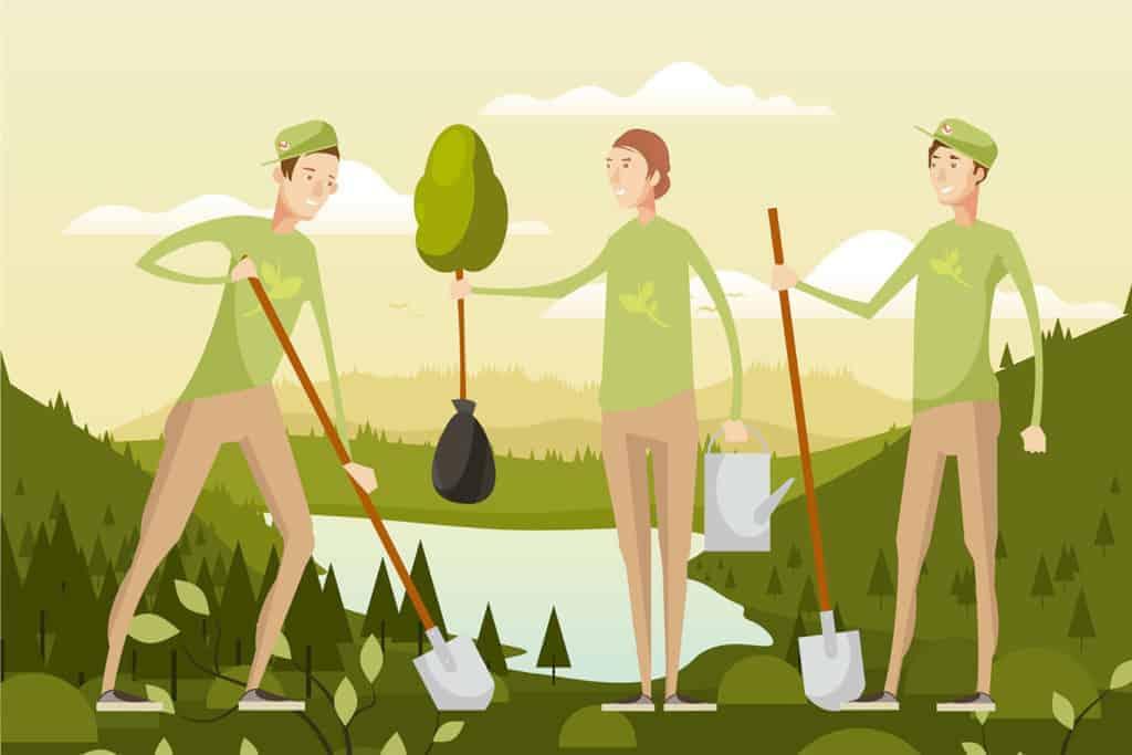volontariato ambientale